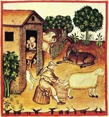 Historia del libro antiguo espa ol la baja edad media - Casa asia empleo ...